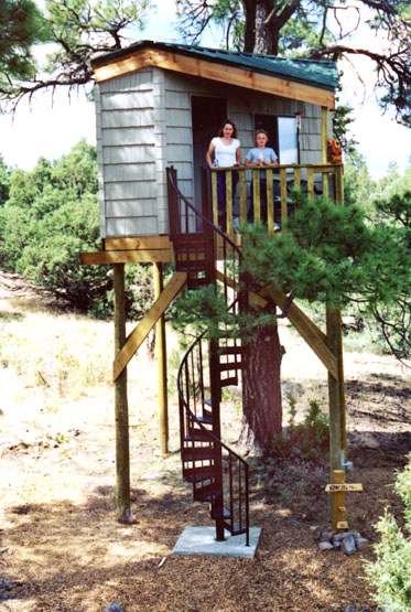 #606. The ULTIMATE Treehouse.